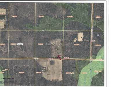 Gleason Residential Lots & Land For Sale: 40 Acres 2nd Ave Rd