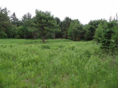 Residential Lots & Land For Sale: 100ac On Cth Q