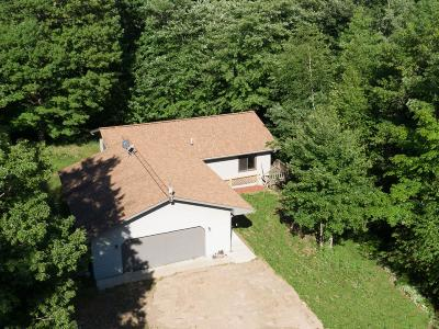 Phelps Single Family Home For Sale: 3840 Schroeder Rd
