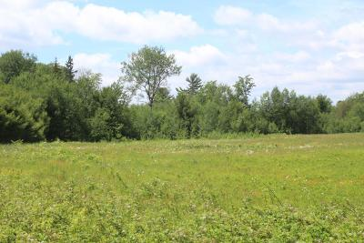 Rhinelander Residential Lots & Land For Sale: On Trout Creek Rd
