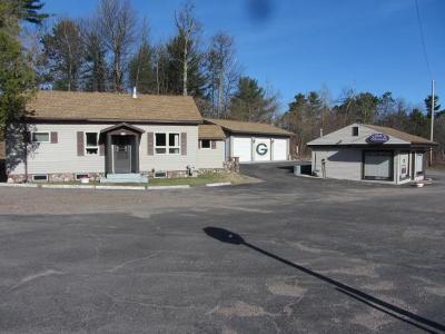 Minocqua Single Family Home For Sale: 8135 Hwy 51