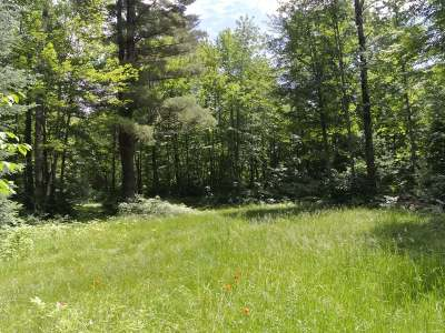 Rhinelander WI Residential Lots & Land For Sale: $16,900