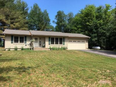 Eagle River Single Family Home For Sale: 1927 Blueberry Ln