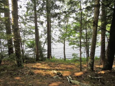 Rhinelander Residential Lots & Land For Sale: On North Dr #Lot 1