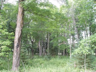 Park Falls Residential Lots & Land For Sale: On Heritage Ln