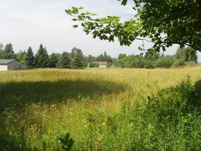 Park Falls Residential Lots & Land Active Under Contract: On River Rd N
