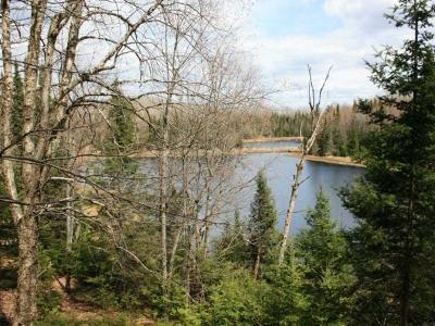 Residential Lots & Land For Sale: Near Stateline Lake Rd
