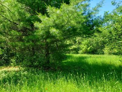 Tomahawk Residential Lots & Land For Sale: On Thomas Rd