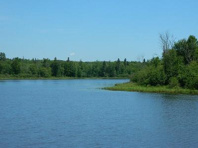Winter Residential Lots & Land For Sale: On Northern Shores Way #Lot 12