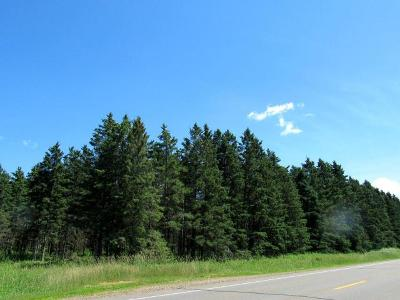 Merrill Residential Lots & Land For Sale: 78 Acres Hwy 64