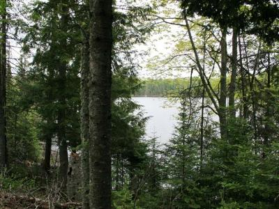 Residential Lots & Land For Sale: On Sucker Lake Rd #4