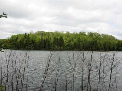 Residential Lots & Land For Sale: On Sucker Lake Rd #6B