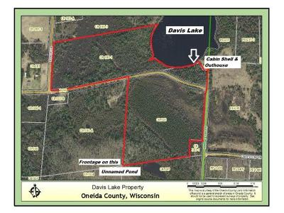 Langlade County, Forest County, Oneida County Single Family Home For Sale: 2784 Range Line Rd