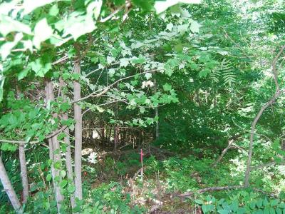 Residential Lots & Land For Sale: Lot 1 Timber Lodge Rd