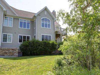 Langlade County, Forest County, Oneida County Condo/Townhouse For Sale: 1507 Eagle St #101