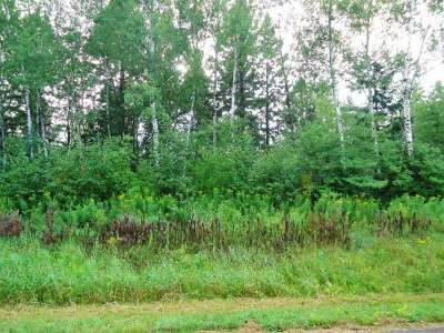 Tomahawk Residential Lots & Land For Sale: On Phalzgraff Rd