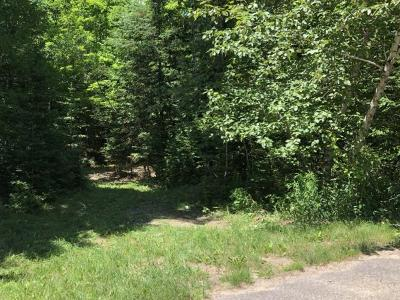 Crandon Residential Lots & Land For Sale: On Evergreen Rd