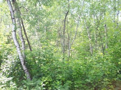Park Falls Residential Lots & Land For Sale: On Flowage Rd