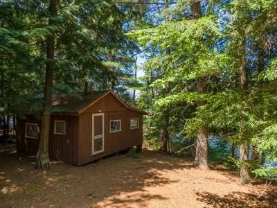 Langlade County, Forest County, Oneida County Single Family Home For Sale: 4295 Thunder Ln
