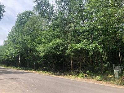 Rhinelander Residential Lots & Land For Sale: Parcel A Forest Ln