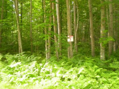 Residential Lots & Land For Sale: On Glacier Ridge Rd
