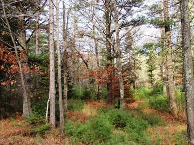 Eagle River Residential Lots & Land For Sale: Lot #4 Hwy 45