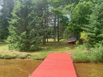 Langlade County, Forest County, Oneida County Single Family Home For Sale: 16752 Wilderness Ln