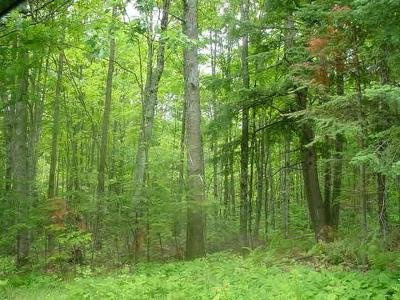 Residential Lots & Land For Sale: Near Hwy 51