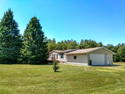 Tomahawk Single Family Home For Sale: W5668 Thomas Rd