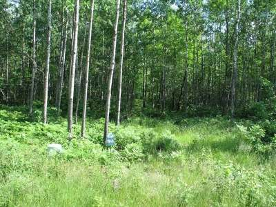 Residential Lots & Land For Sale: On Pfeifer Rd