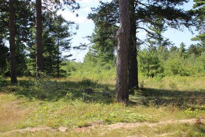 Rhinelander Residential Lots & Land For Sale: 3711 Pine Grove Dr