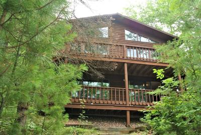 Minocqua Single Family Home For Sale: 8865 Bo Di Lac Dr