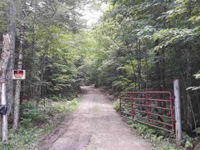 Rhinelander Residential Lots & Land For Sale: 4553 Shingle Mill Rd