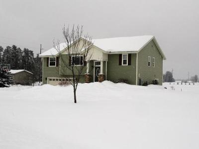 Tomahawk Single Family Home For Sale: 2123 Theiler Dr