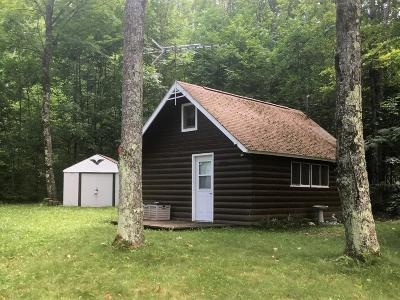 Langlade County, Forest County, Oneida County Single Family Home For Sale: 5878 White Eye Lake Rd