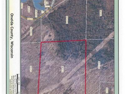 Rhinelander Residential Lots & Land For Sale: Off Flannery Lake Rd