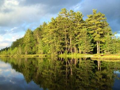Rhinelander Residential Lots & Land For Sale: Lot 56 Emden Lake Rd