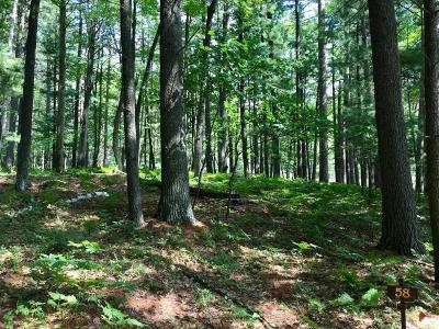 Rhinelander Residential Lots & Land For Sale: Lot 58 Emden Lake Rd