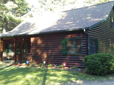 Eagle River Single Family Home For Sale: 730 Bloom Rd