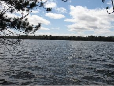 Oneida County, Lincoln County, Price County, Vilas County Residential Lots & Land For Sale: On Trout Rd