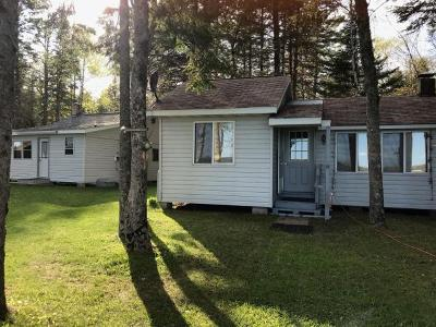 Langlade County, Forest County, Oneida County Single Family Home For Sale: 8880 Pine Lake Rd W