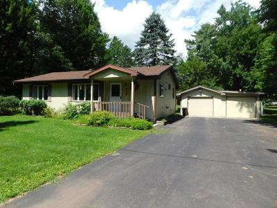 Tomahawk WI Single Family Home For Sale: $109,900