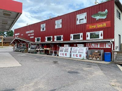 Eagle River Commercial For Sale: 1970 Hwy 45