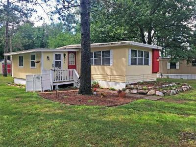 Minocqua Single Family Home For Sale: 8521 Hower Rd #28