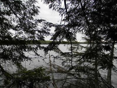 Pickerel WI Residential Lots & Land For Sale: $104,900