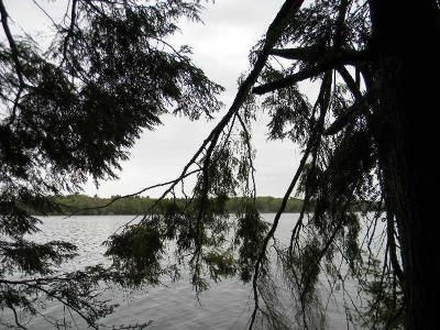 Pickerel WI Residential Lots & Land For Sale: $259,900
