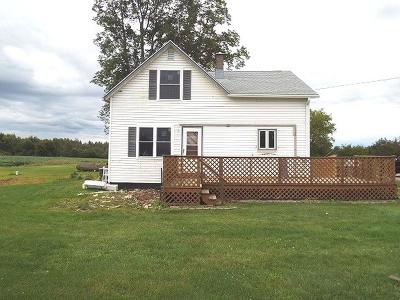 Antigo Single Family Home For Sale: W12213 Hwy 64