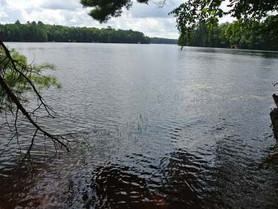 Three Lakes WI Residential Lots & Land For Sale: $179,900