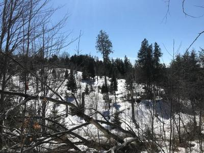 Residential Lots & Land For Sale: Off Landing Lake Rd