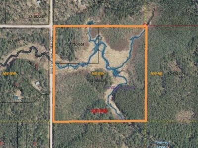 Residential Lots & Land For Sale: On Big Portage Lake Rd #40 ACRES